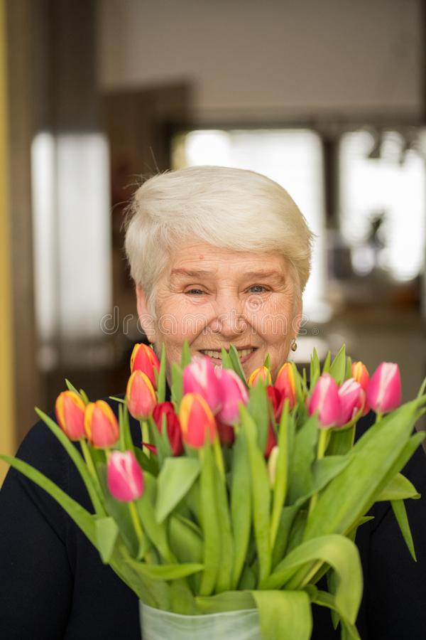 Elderly woman with tulip flowers. Gray haired happy elderly smiling woman with tulip flowers in the from of window stock images