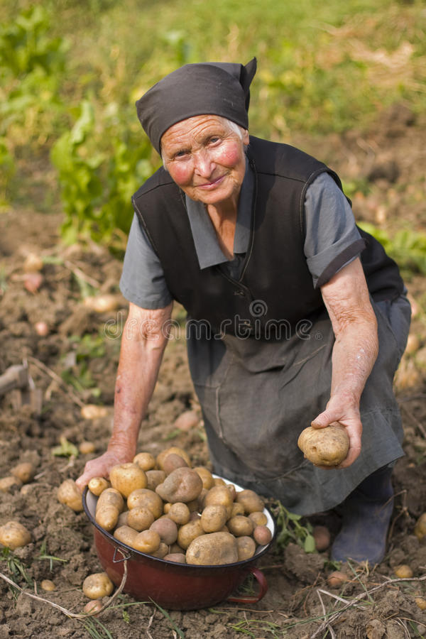 Elderly woman working outdoors royalty free stock photos