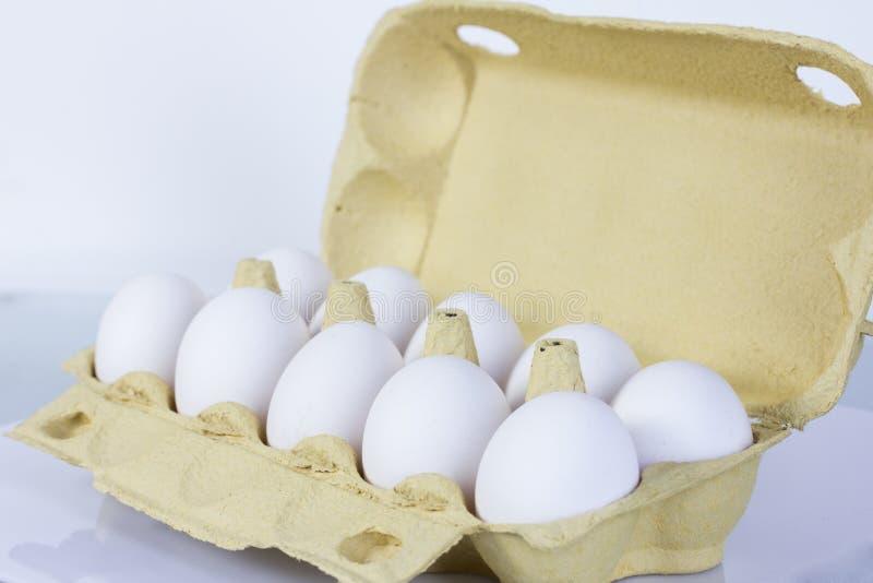 Eldfast form av ägg arkivbilder