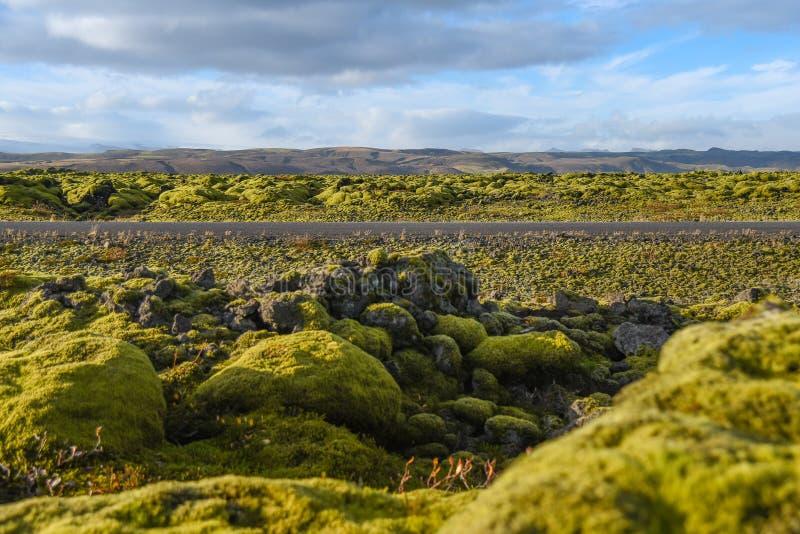 Eldhraun熔岩荒野风景在冰岛 免版税库存图片