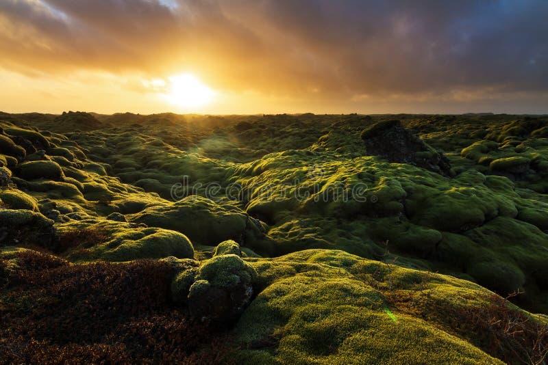 Eldhraun powulkaniczny wschód słońca zdjęcie royalty free