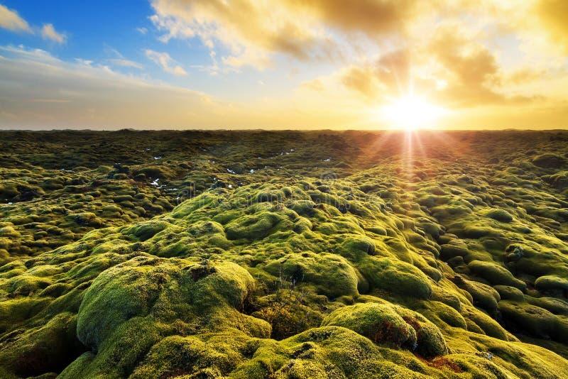 Eldhraun soluppgång arkivbilder