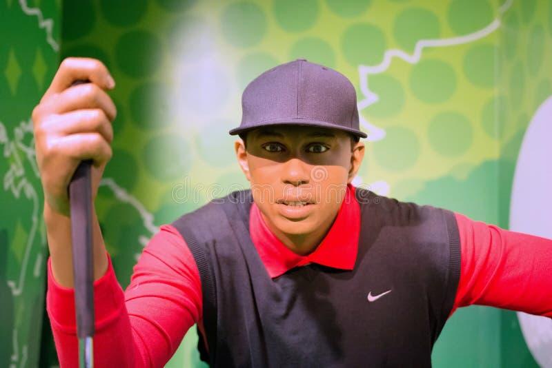 Eldrick Tont Tiger Woods Wax Figure fotografering för bildbyråer