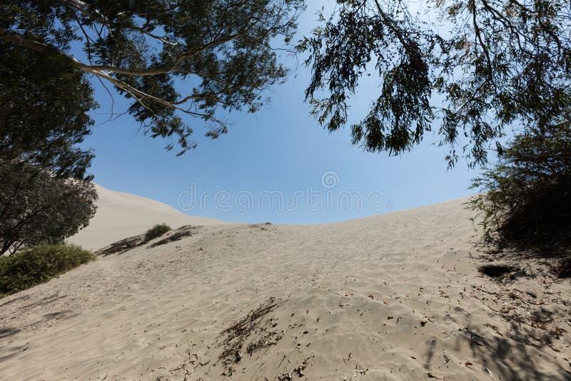 ele o?sis de Huacachina fotografia de stock