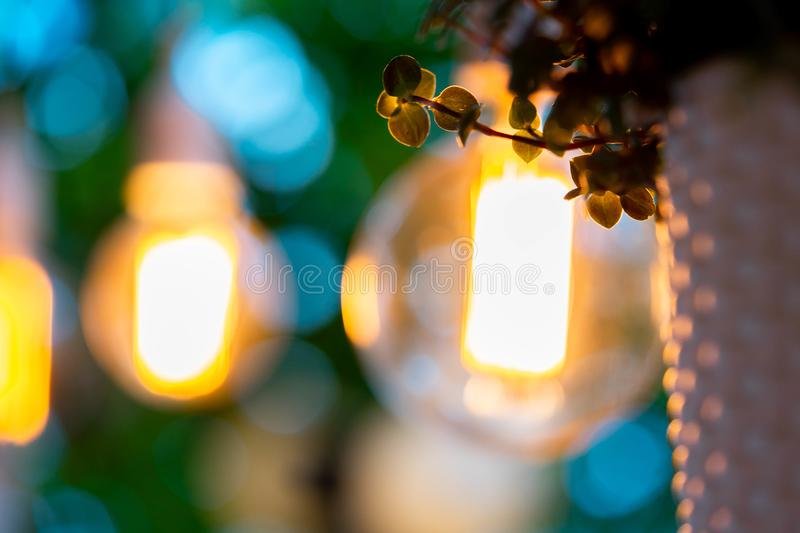 Electric bulb and hanged plant at evening time in garden. Cozy and comfortable place. Wedding party decoration stock image