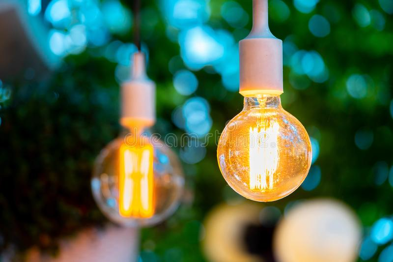 Electric bulb and hanged plant at evening time in garden. Cozy and comfortable place. Wedding party decoration royalty free stock photography