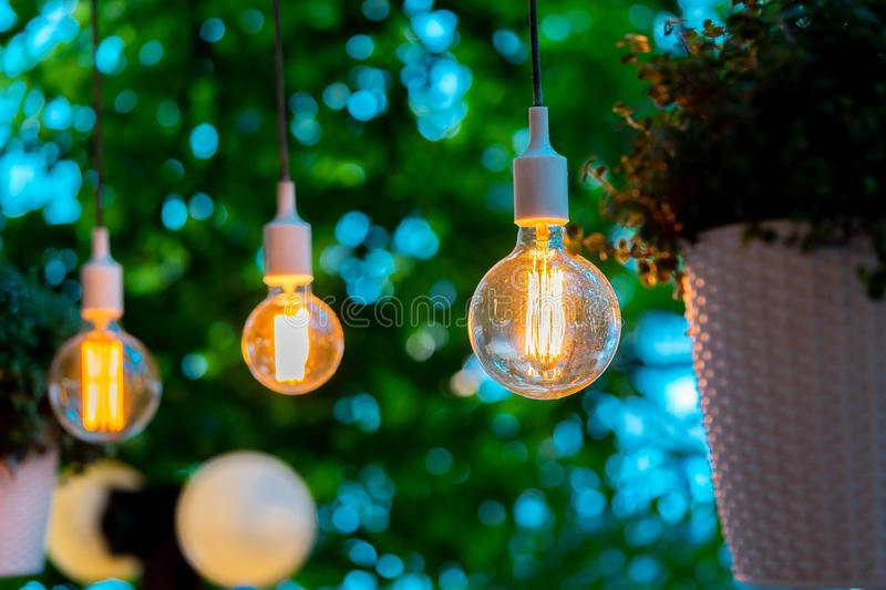 Electric bulb and hanged plant at evening time in garden. Cozy and comfortable place. Wedding party decoration stock photos