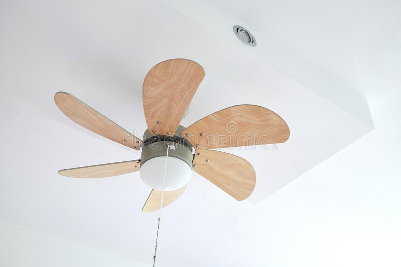 Electric ceiling fan with lamp stock image
