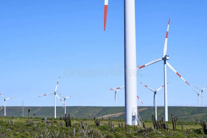 Electric generator stock image