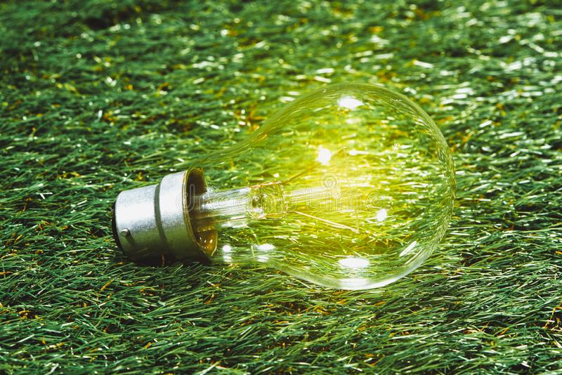 Electric glass bulb on grass background. Ideas creativity concept.  royalty free stock image