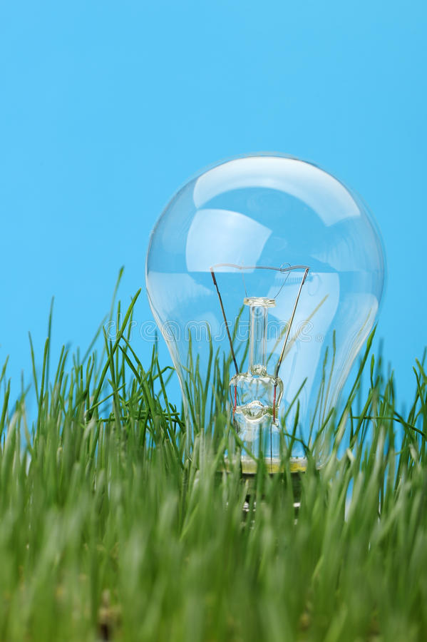 Electric Lamp In A Grass Royalty Free Stock Photos