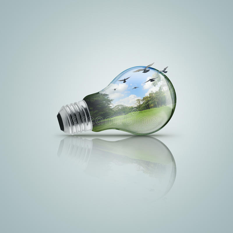 Electric light bulb with forest, Ecological concept stock image