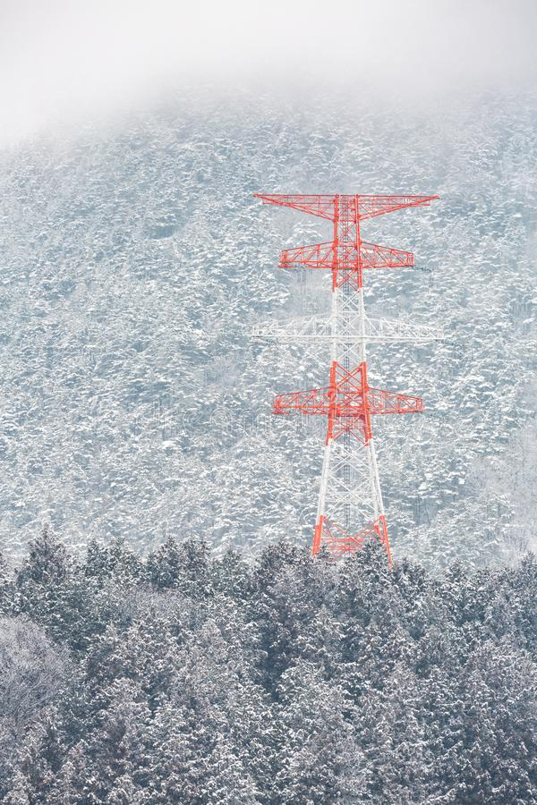 Electric pole Winter Landscape. Electric pole Power post with winter Landscape of Pine Forest at Nagano Chubu Japan stock photography