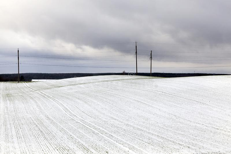 Electric poles , Winter stock photography