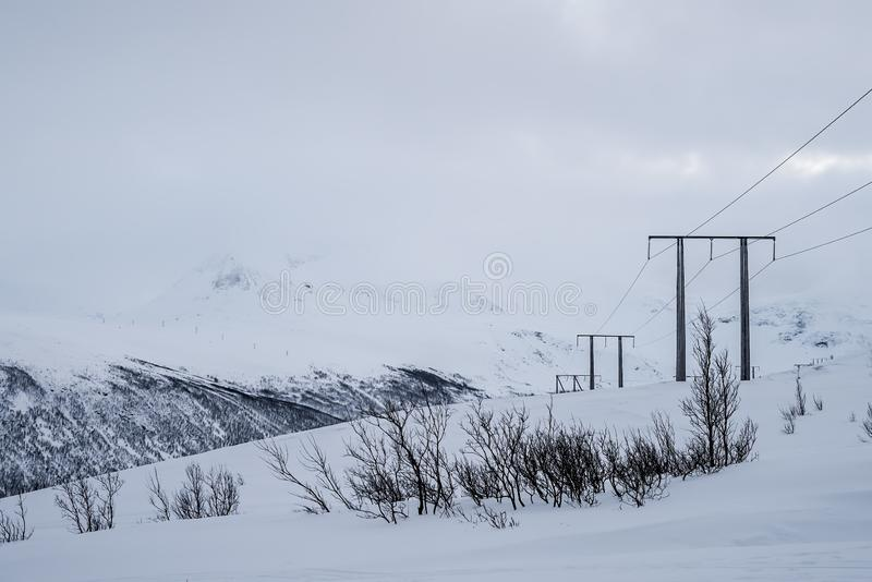 Electric poles in winter royalty free stock photography