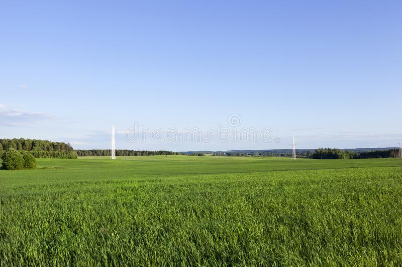 Electric transmission line royalty free stock images