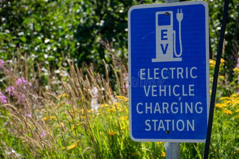 Electric vehicle only charging station sign for environmentally friendly vehicles with a green grass and flower background stock photo