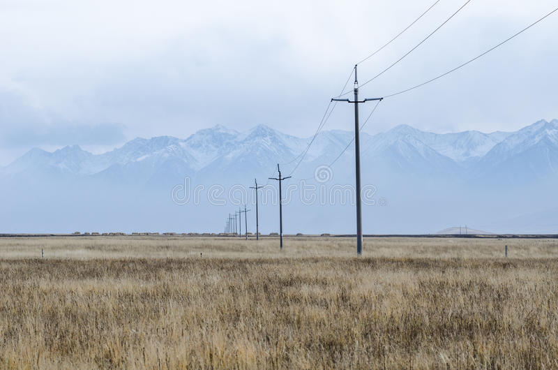 Electrical lines and pillars across the plain of upper Tibet royalty free stock images