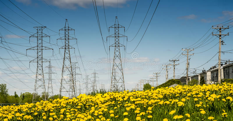 Electrical towers. And dandelion with wires in a residential area on a blue sky royalty free stock image
