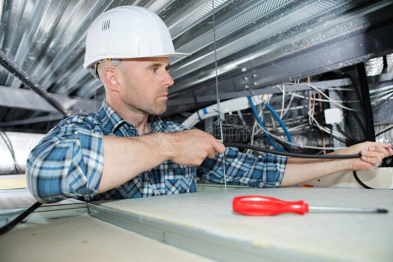 Electrician fixing neon on ceiling stock image