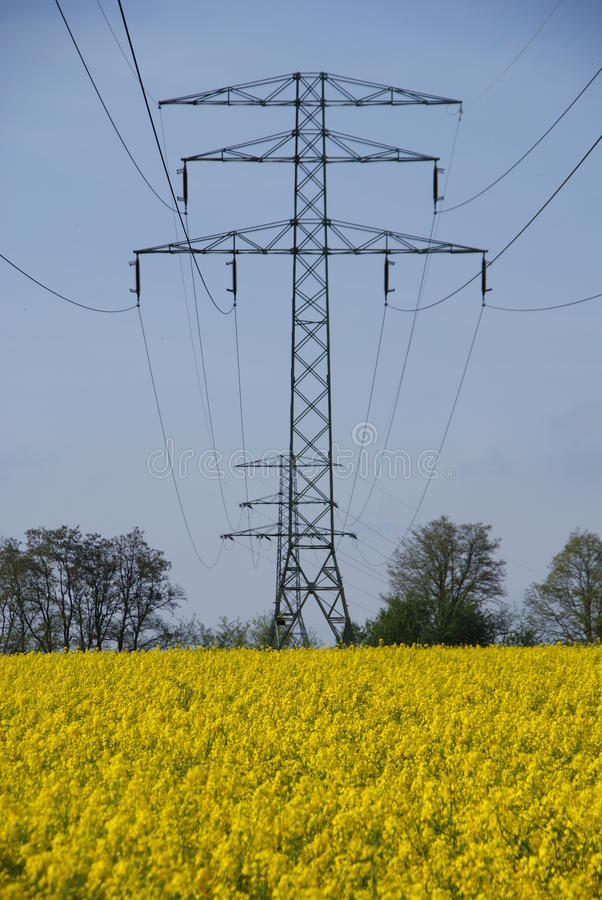Download Electricity Mast And Yellow Stock Photo - Image: 14435762