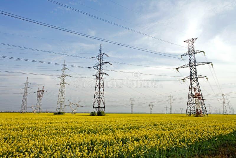 Electricity poles stock photo