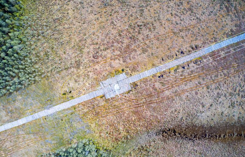 Electricity Power Line on Swamp Aerial View stock photo