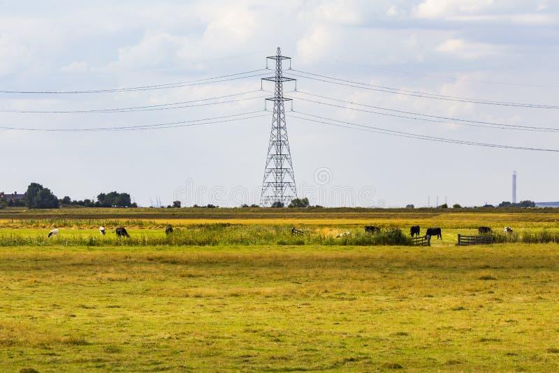 Electricity pylon. Faversham, England, United Kingdom royalty free stock image