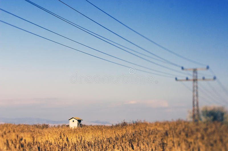 Electricity Pylon Wires Royalty Free Stock Image