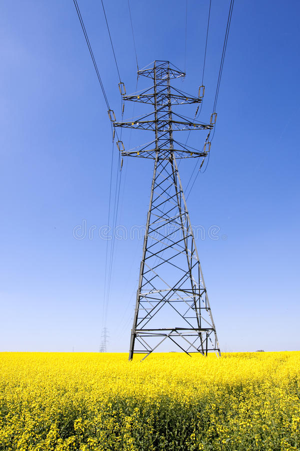 Download Electricity Pylons In A Field Of Stock Image - Image: 31122595