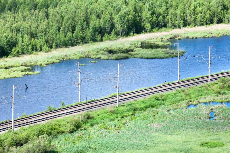 Electrified железнодорожное в северных древесинах стоковые изображения