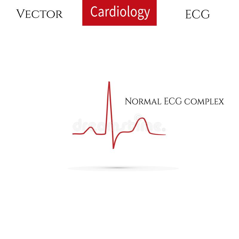 Electrocardiogram, ecg line royalty free illustration