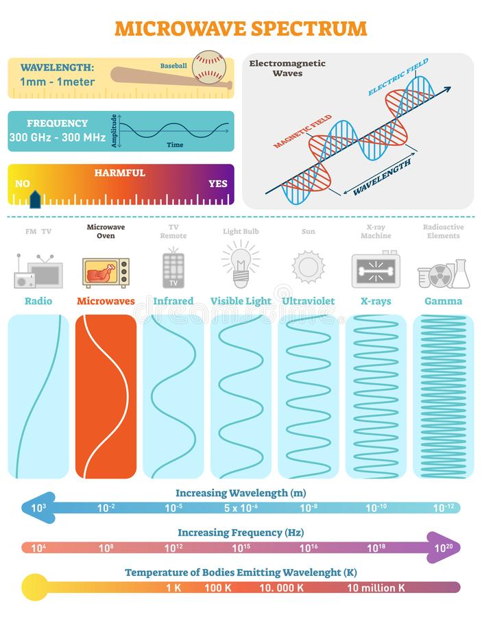 Electromagnetic Waves: Microwave Spectrum. Vector illustration diagram with wavelength, frequency, harmfulness and wave structure. Science educational stock illustration