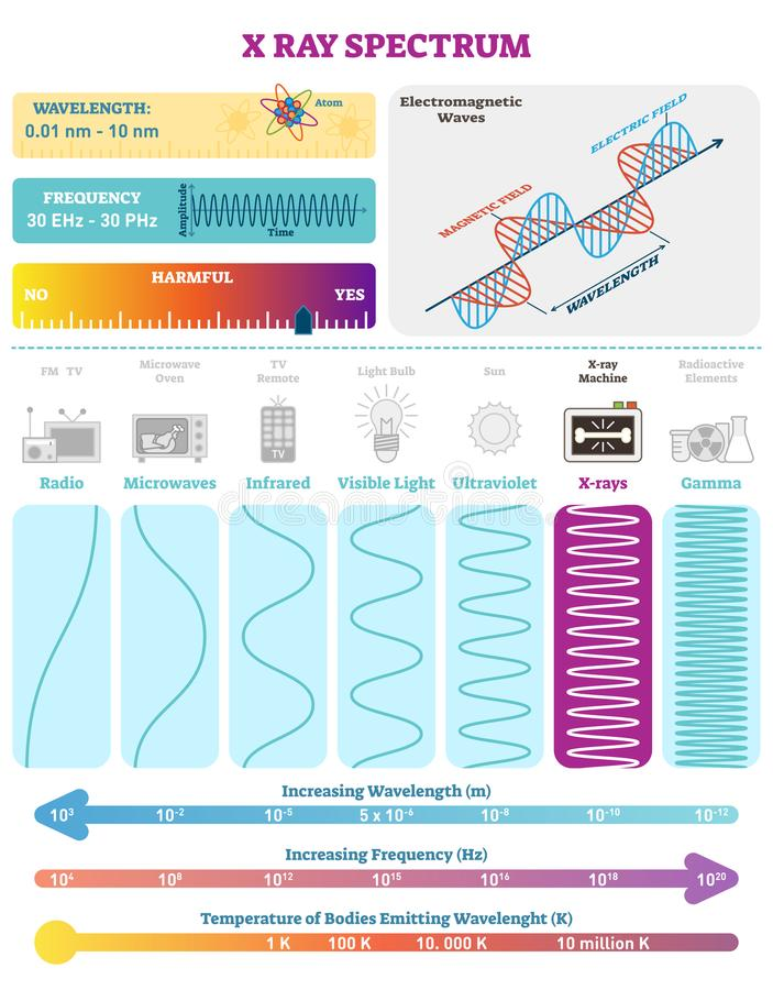 Electromagnetic Waves: X-ray Wave Spectrum. Vector illustration diagram with wavelength, frequency, harmfulness and wave structure. Science educational stock illustration
