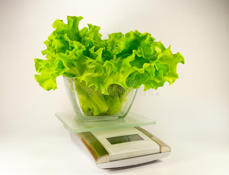 Electronic scale with green salad royalty free stock photography