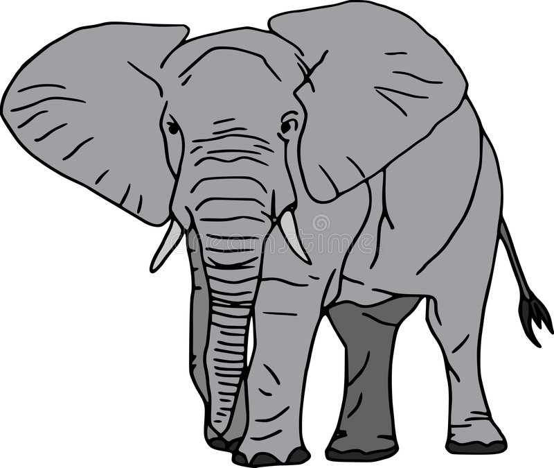 elefant illustration de vecteur