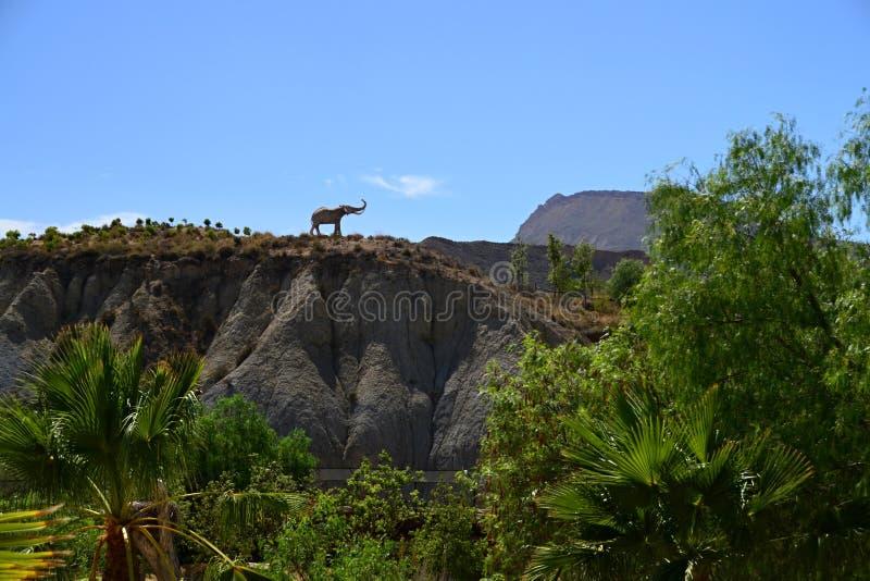 Elefant auf dem Hügel stockbild