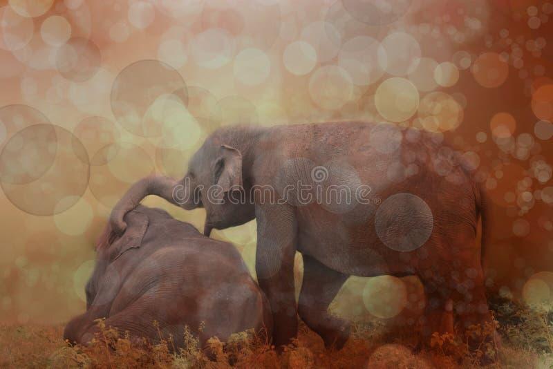 Download Elefant, Der Auf Wiese Spielt Stockfoto - Bild von säugetier, groß: 106800730