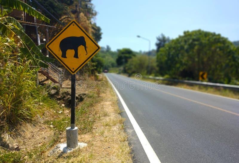 Elefant, der gelbes Zeichen und Stra?e auf Hintergrund in Thailand warnt lizenzfreie stockfotos