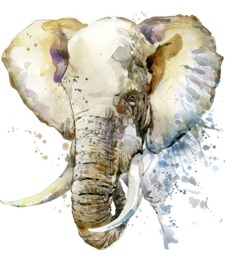 Elefant Elefantillustrationvattenfärg