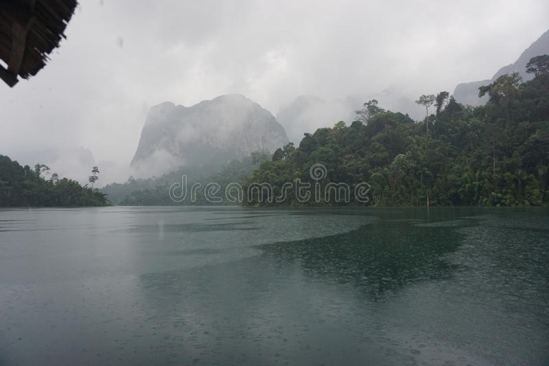 Elefant i Chao Lan Dam arkivfoton