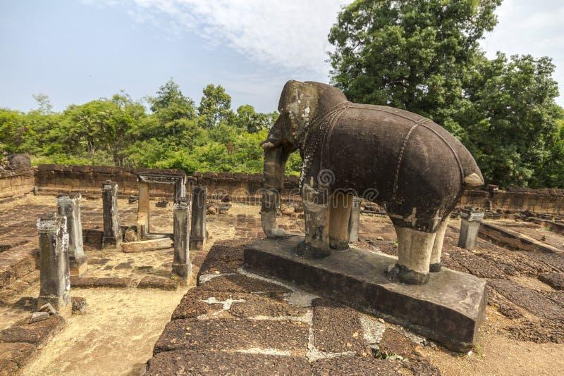Elefant i den Angkor Wat templet, Cambodja royaltyfri foto