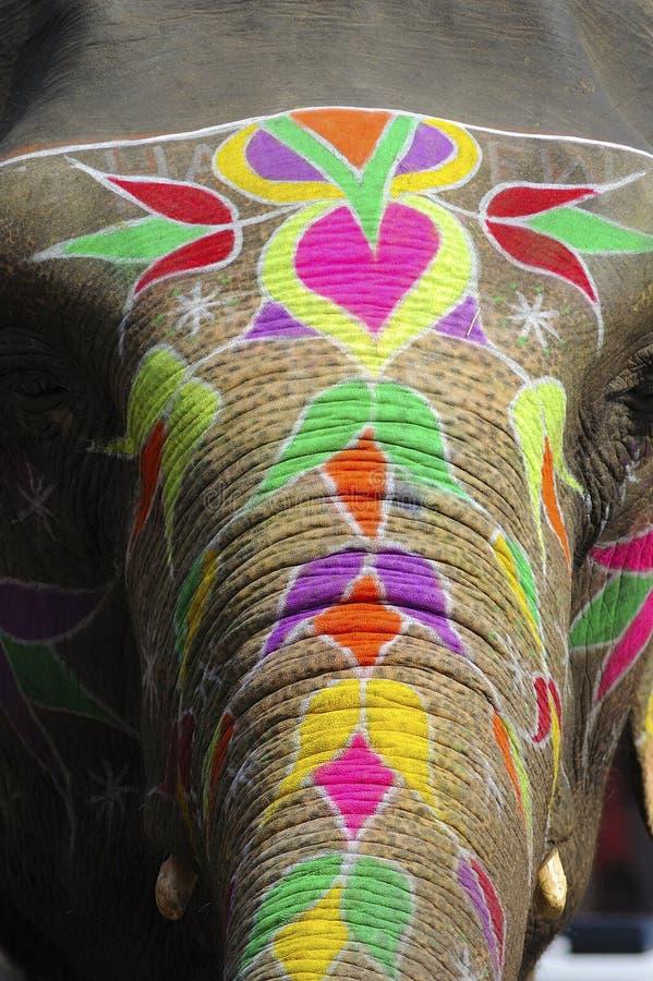 elefant india målade jaipur arkivbilder