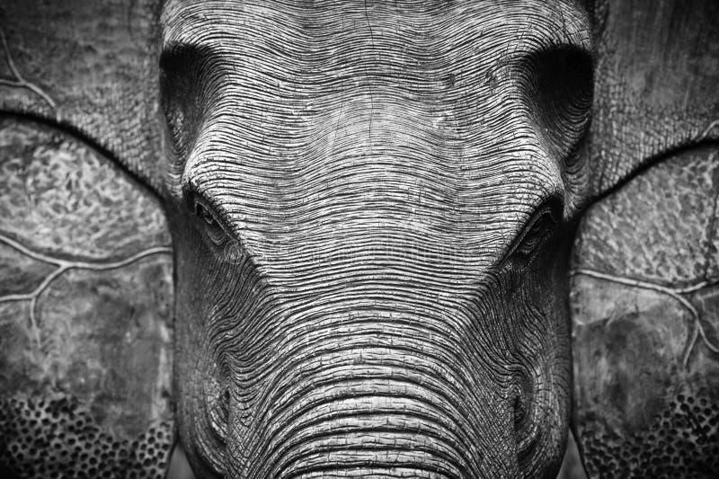 Elefant-Kopf in Schwarzweiss lizenzfreies stockbild