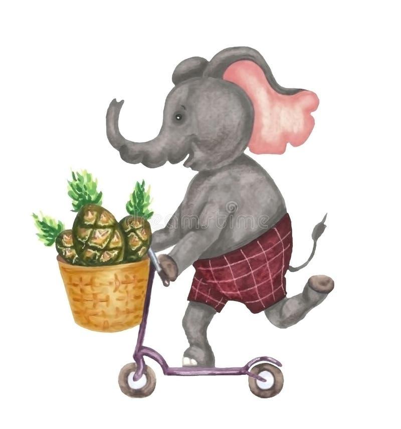 Elefant på en sparkcykel royaltyfri illustrationer