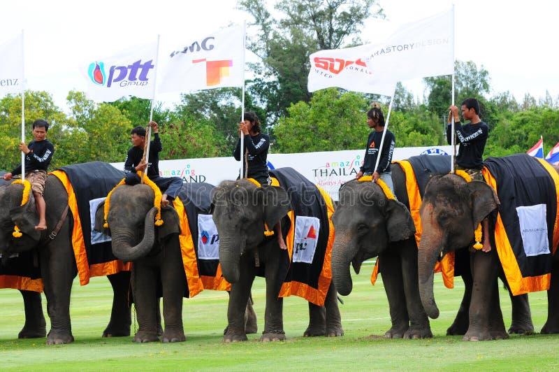 Elefant-Polo stockbild