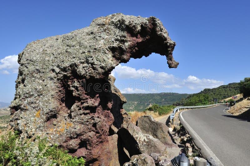 Elefant skała, Sardinia Włochy obraz royalty free