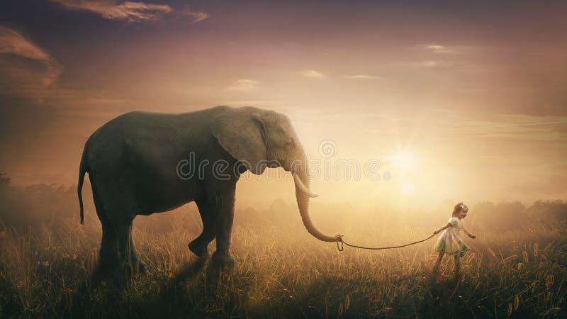 Elefant som gås av barnet royaltyfri bild