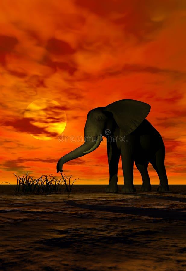 Elefante ilustração royalty free