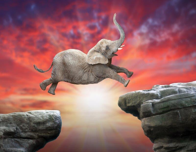 Elefante africano che salta sopra una lacuna illustrazione vettoriale